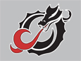 Dragon Large Logo