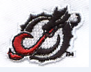 Dragon Logo 1