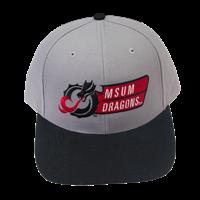 RICHARDSON SURGE MSUM DRAGONS CAP