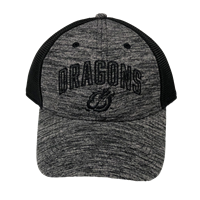 The Game Dragons Heathered Mesh Back Cap