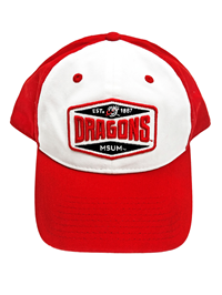 The Game Msum Dragons Patch Two Tone Cap