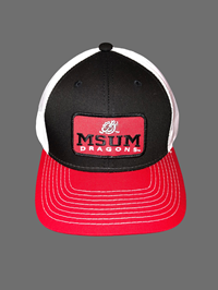 The Game Msum Dragons Patch Cap